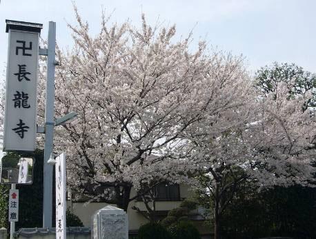 花の寺めぐり 11号-7