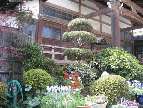 花の寺めぐり 11号-8