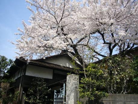 花の寺めぐり 11号-12