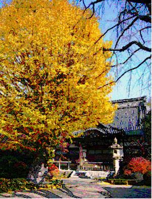第16号 氷川神社